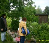 viel zu gucken auch im Intergrationsgarten